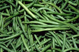 Green beans - excellent source of fibre, and vitamins k and c. A standard cupful holds a not-too-shoddy amount of vitamins b1, b2, b3, b6, E, as well as copper, iron, magnesium and potassium.