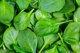 Half a cup of cooked spinach offers a nutrient-rich addition to any plate. It contains a ridiculous amount of vitamin K (500%), 50% of your vitamin A, over 30% of your manganese and folate, and over 15%of your magnesium, copper and b2.